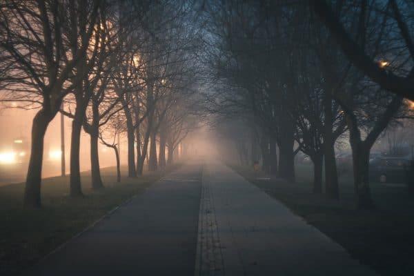 Nebel fotografieren